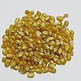 1kg Popcorn Mais - Teil Mushroom Teil Butterfly - extra groß -