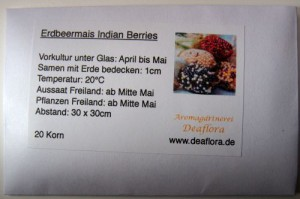 Popcornmais Indian Berries